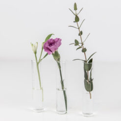 Reagenzglas Vaseneinsatz Deko