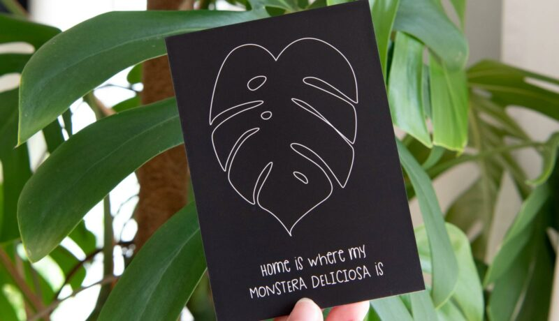 Postkarte Monstera Home is...