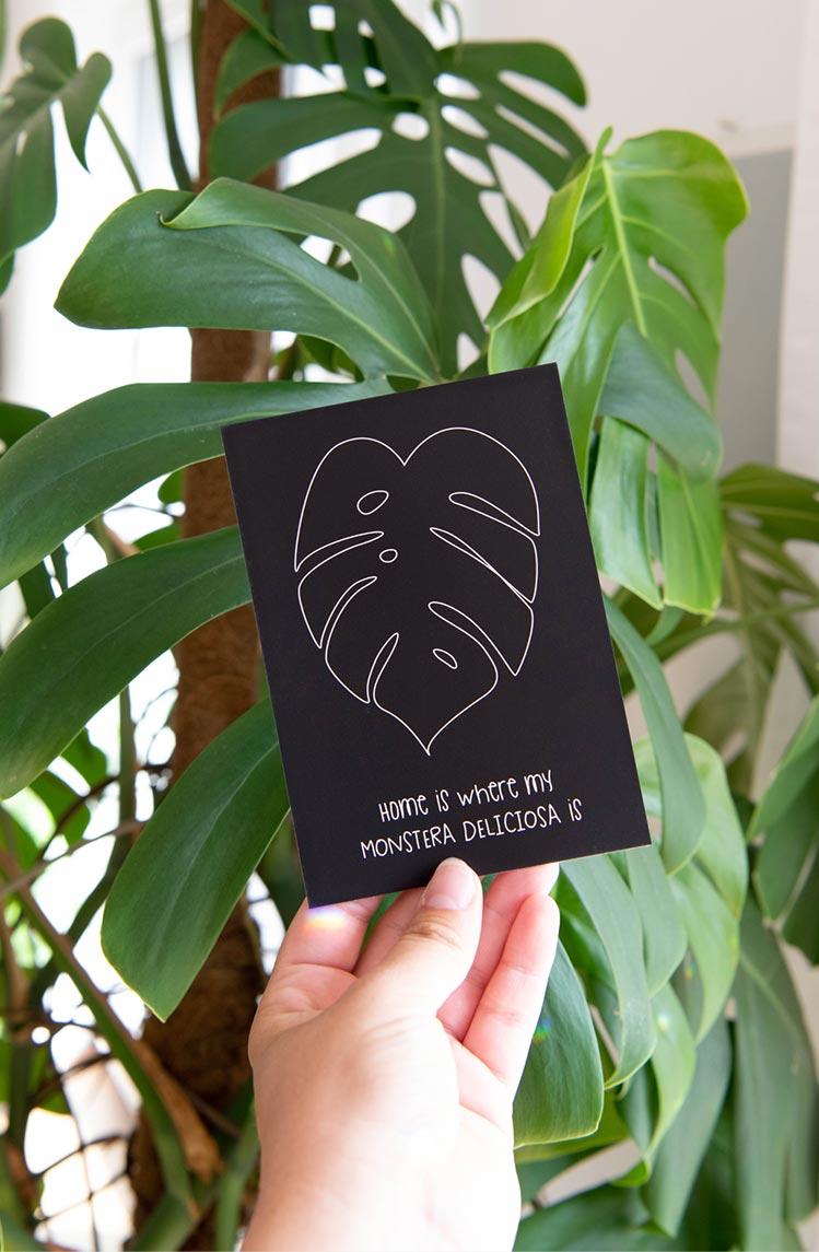 Postkarte Monstera Monday