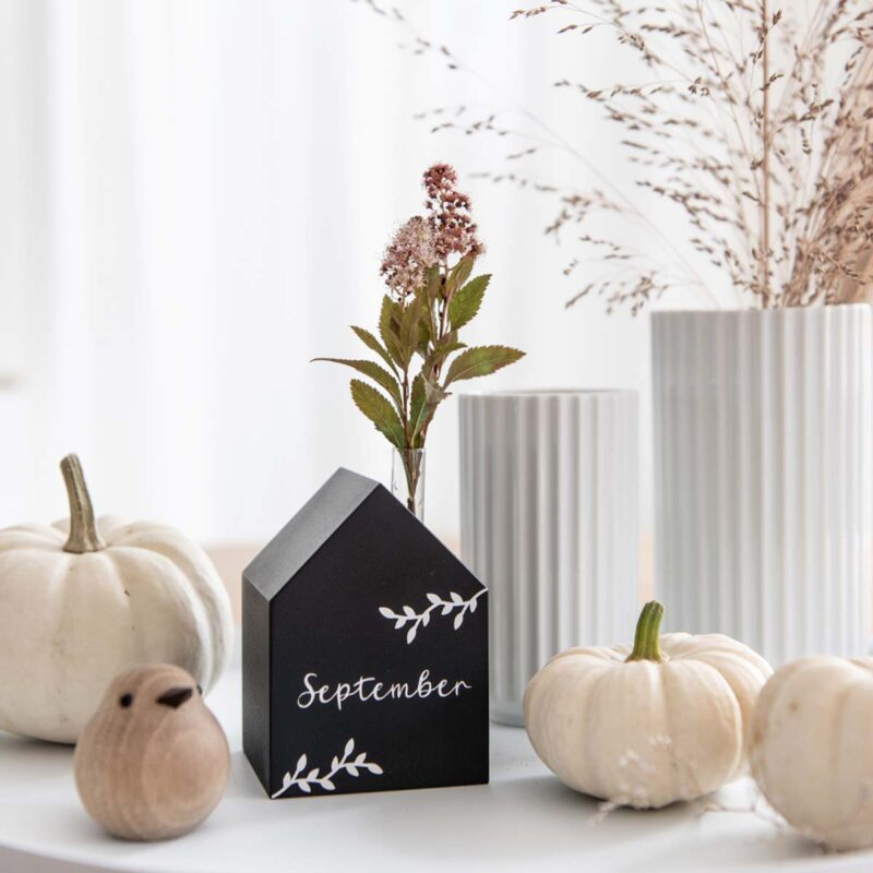 Spierstrauch Vase Blume